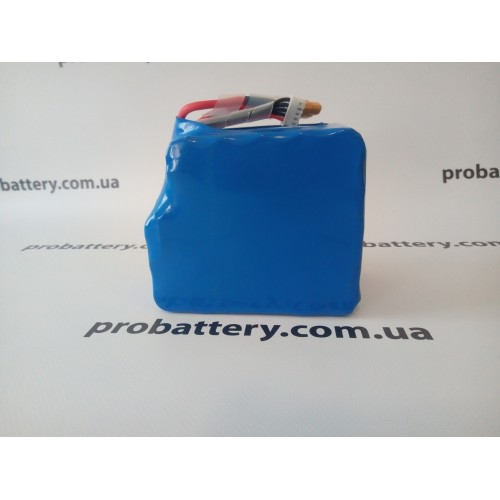 Аккумуляторная сборка Li-ion 12V 16.2Ah в интернет-магазине ProBattery.com.ua
